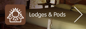 Lodges and Pods