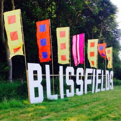 Blissfields 2015 Image