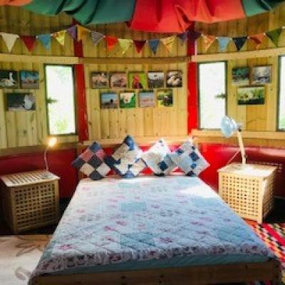 Hook a Duck!!!  Now a WOODEN CABIN !! Acorn Ponds Quirky latest Glamping accommodation Image