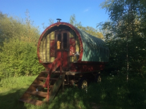Acorn Ponds peaceful Glamping Retreat