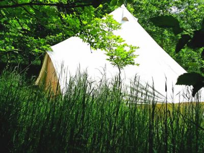 Woodland Escape Glamping Holidays Image