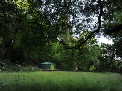 Redwood Valley Woodland Cabin and Yurts